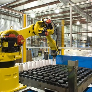 Robotic Pallet Loader A